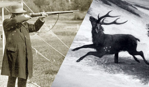 Олимпийская дисциплина летом - стрельба по оленям