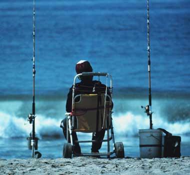 Рыбалка осенью, особенности поведения рыб