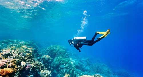 О дайвинге и подводном снаряжении