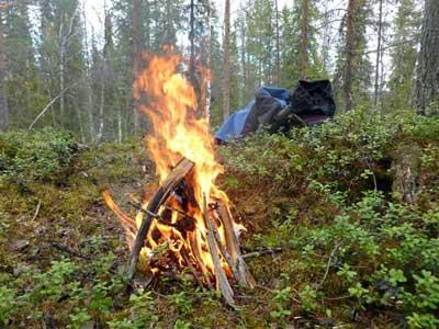 Как развести костёр в лесу