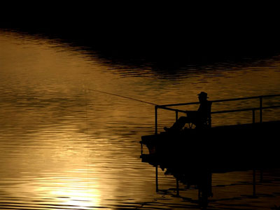 subtleties-night-fishing