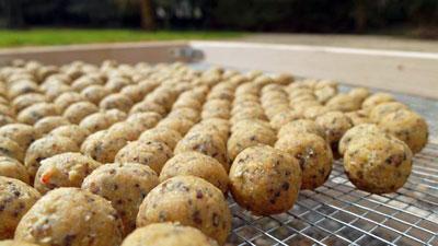 Салапинская каша - рецепт прикормки