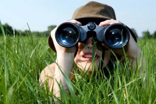 Бинокль для наблюдения за птицами, выбираем