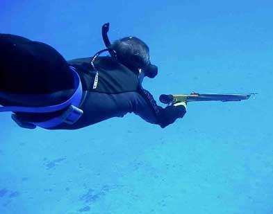 Стоимость снаряжения подводного охотника
