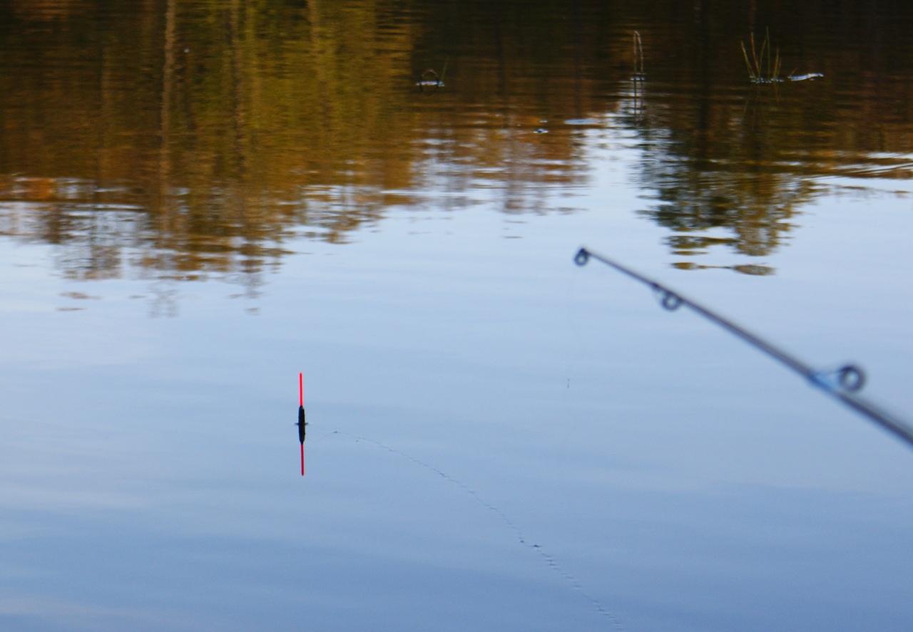 Как ловить рыбу на удочку ютуб