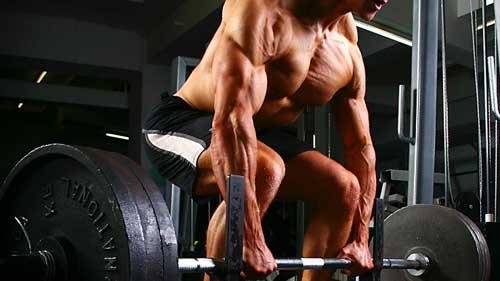 Мышцы спины эффективные упражнения