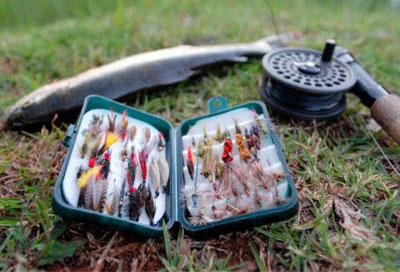Наживка для рыбалки, ее виды