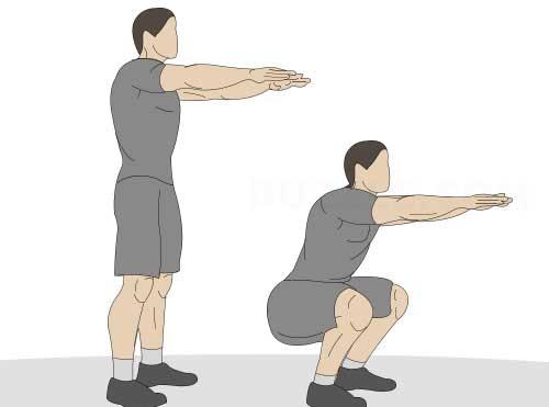Лучшие упражнения для тренировки всего тела