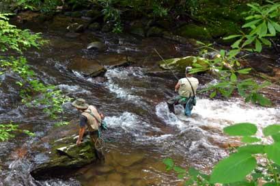 Советы рыбакам - покоряем горные реки