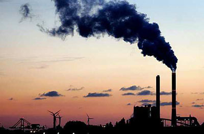 Экологическая проблема, сведение лесов